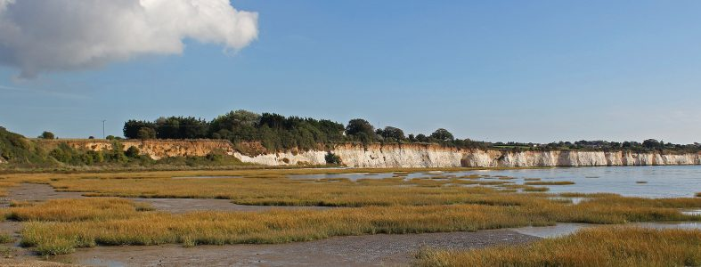 Pegwell CPRE 2 (2)